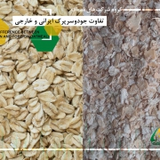 تفاوت جودوسرپرک ایرانی و خارجی